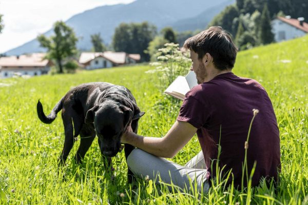 Hotel-Natur-Wiese-Hund-Hotelhund