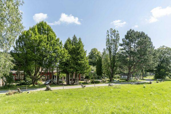 Restaurant-Terrasse-Wiese-Südwesten-Bäume-Natur