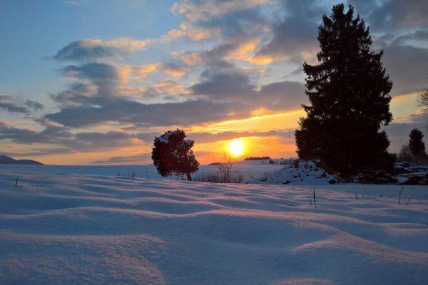 Winter-Schnee-Bäume-Sonnenuntergang-Berge